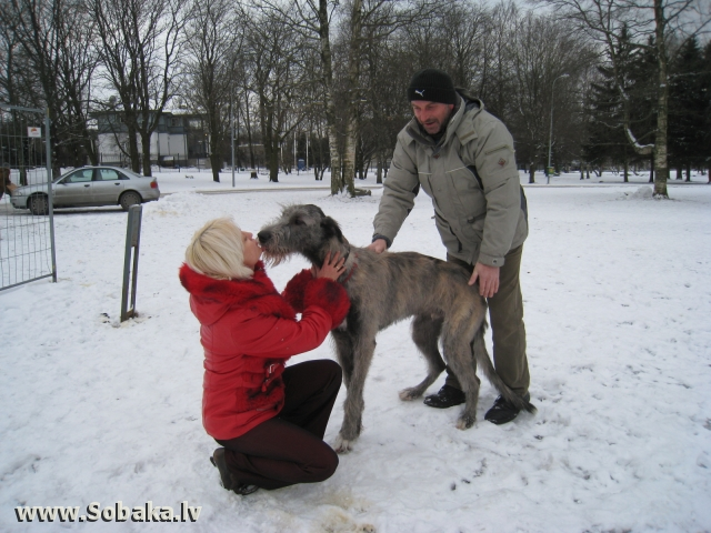 Я тебя помню. 