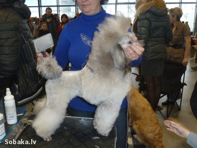 Готовимся к выходу. 